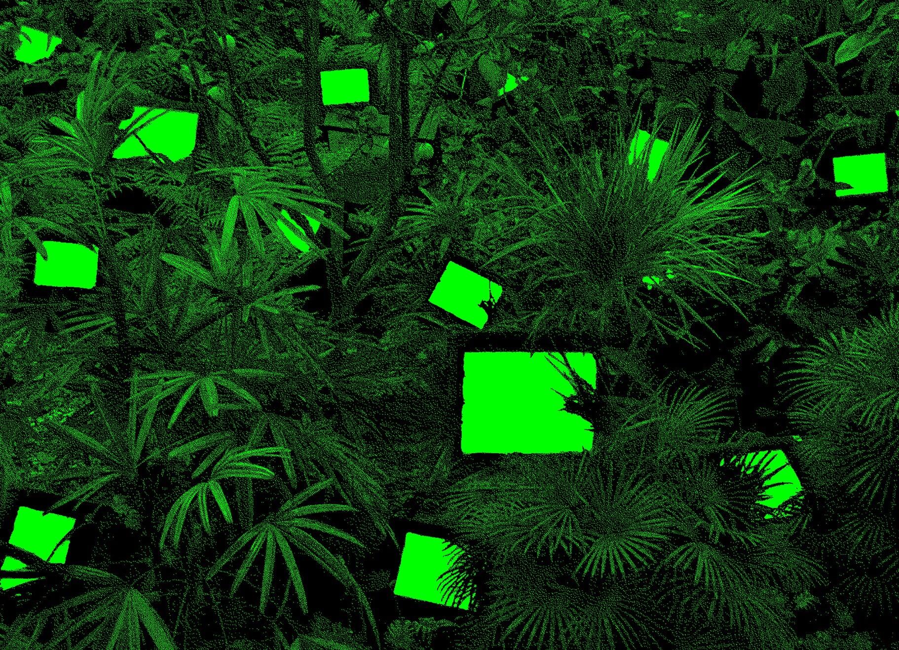 Media Ecology Revisiting Tv Garden Announcements E Flux